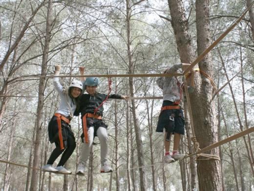 פארק חבלים - פעילות אתגר וגיבוש