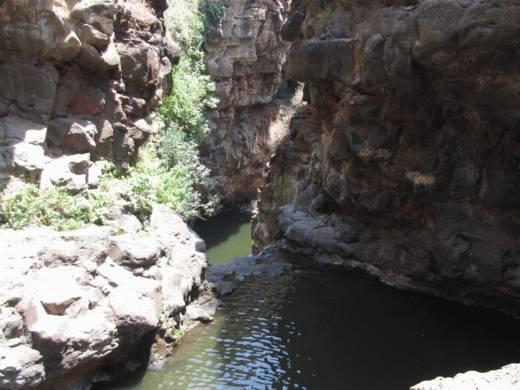 טיולי מים - סנפלינג נחל זוויתן - ערוצים בטבע