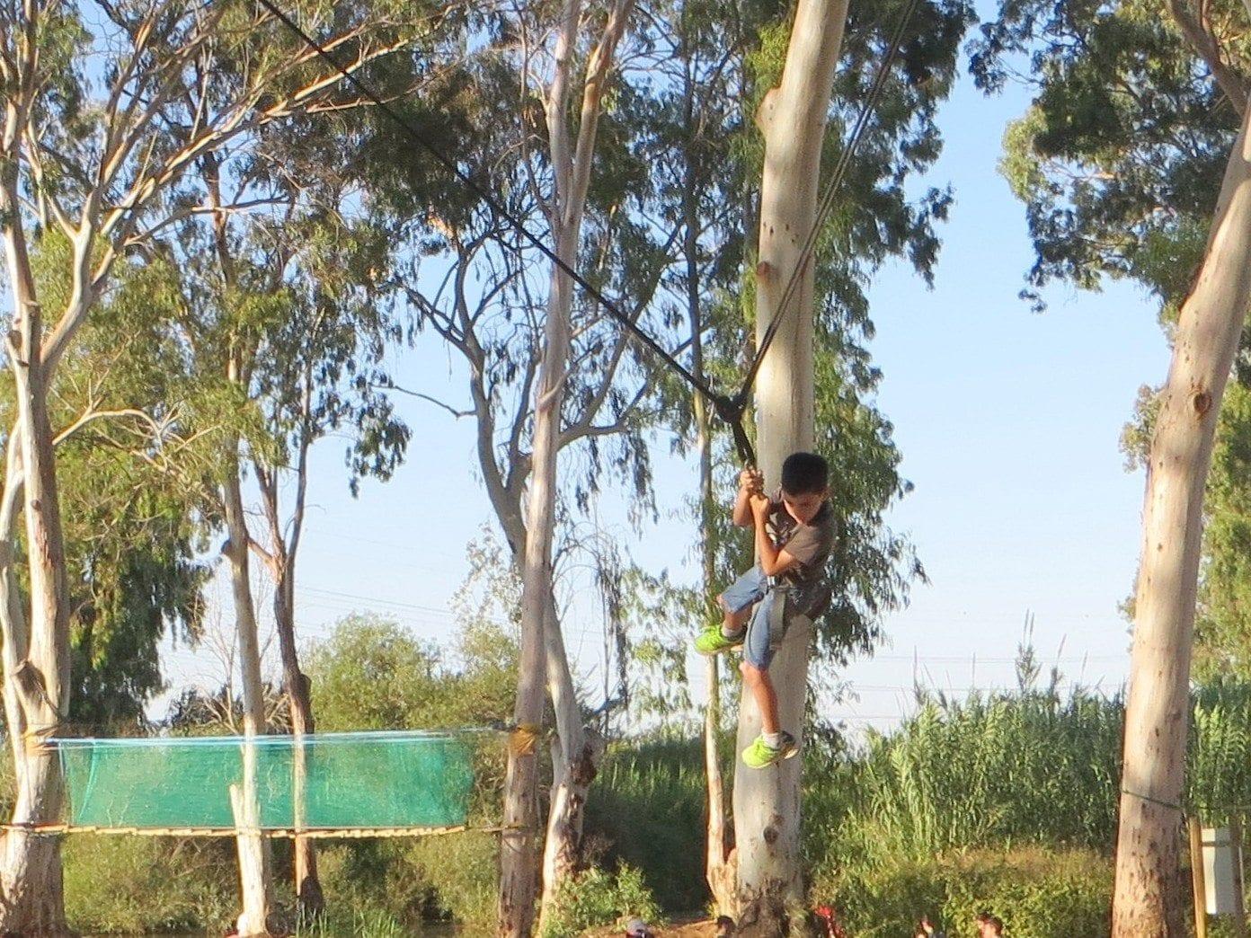 חבלים בין העצים עם נועם בנק