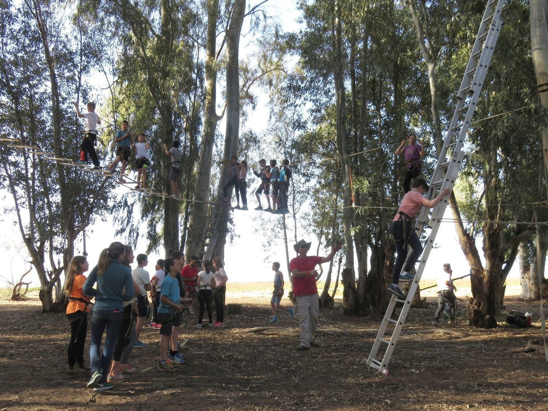 כייף לכל הכיתה בין העצים banketgarim