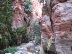 טיולים לירדן, טיולים למזרח התיכון, טרקים למיטיבי לכת, פטרה, קניוני מואב, ערוצים בטבע, טיול לירדן
