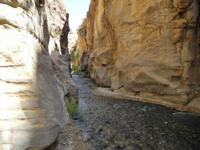 Wadi-Bin-Hammad טיול לירדן עם ערוצים בטבע