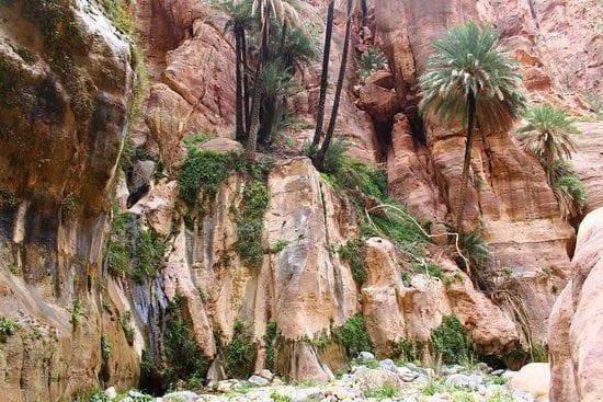 wadi-ghuweir, טיול לירדן, מטיבי לכת, ערוצים בטבע