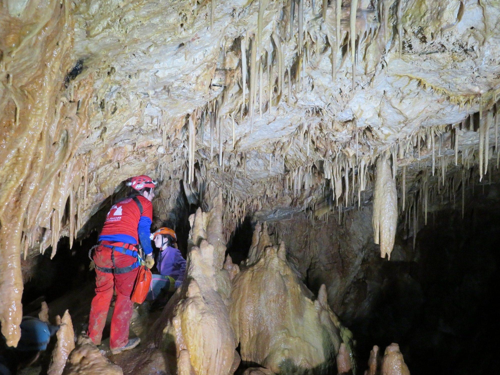 סנפלינג למערת נטיפים מדהימה במרכז - ערוצים בטבע