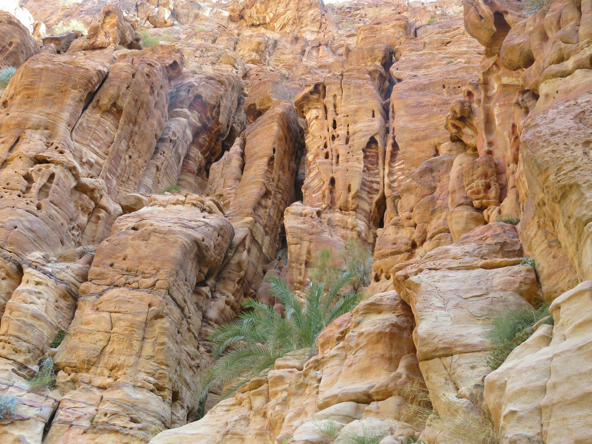 קניוני אדום המדהימים – Jordan עם ערוצים בטבע