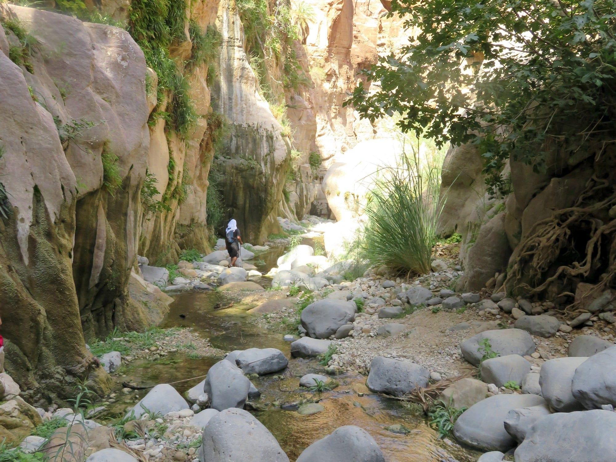 """טיול רטוב ב""""ואדי גוואר"""" - ירדן עם ערוצים בטבע"""