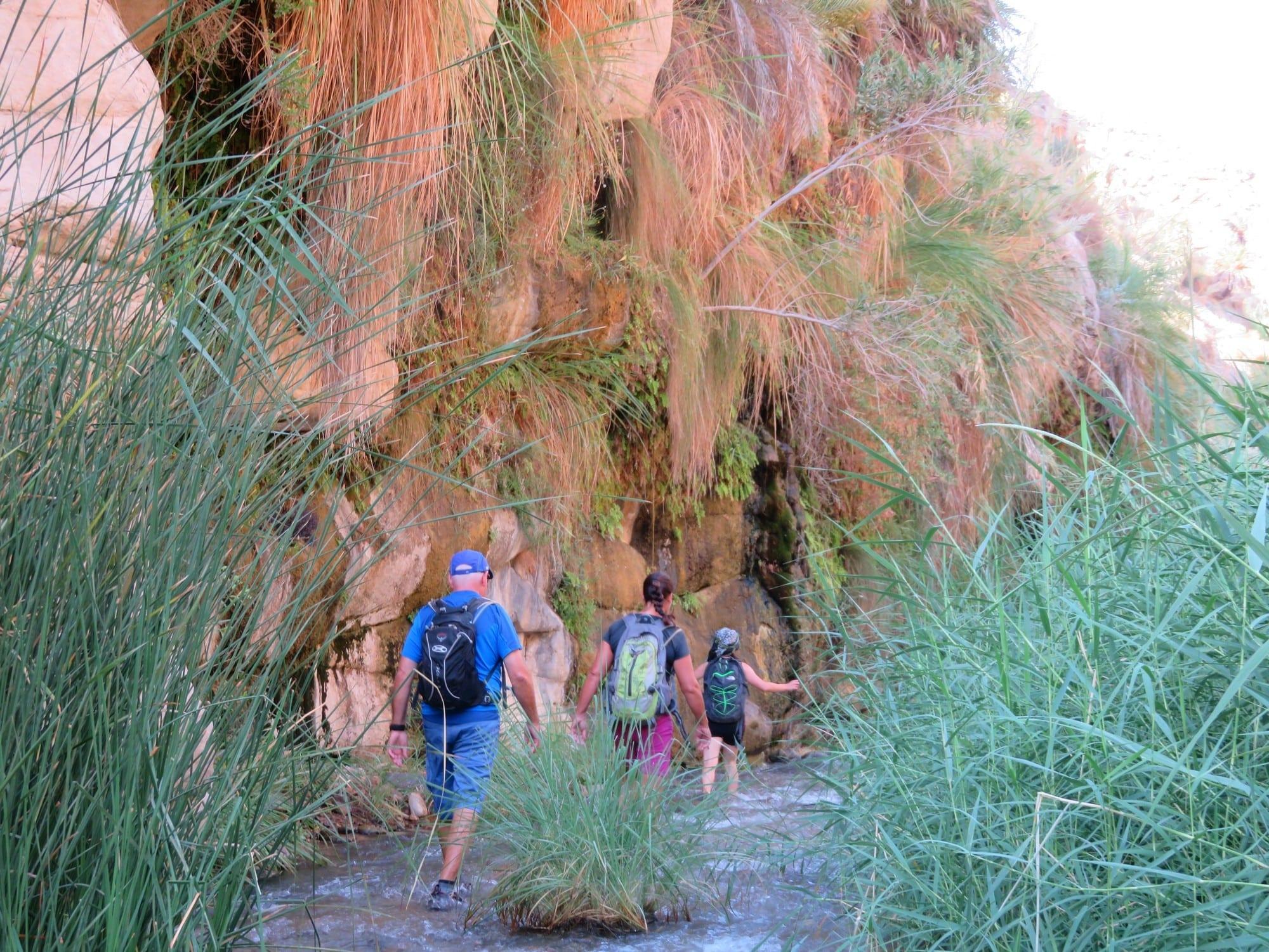 קניוני מואב - - טיול לירדן עם ערוצים בטבע