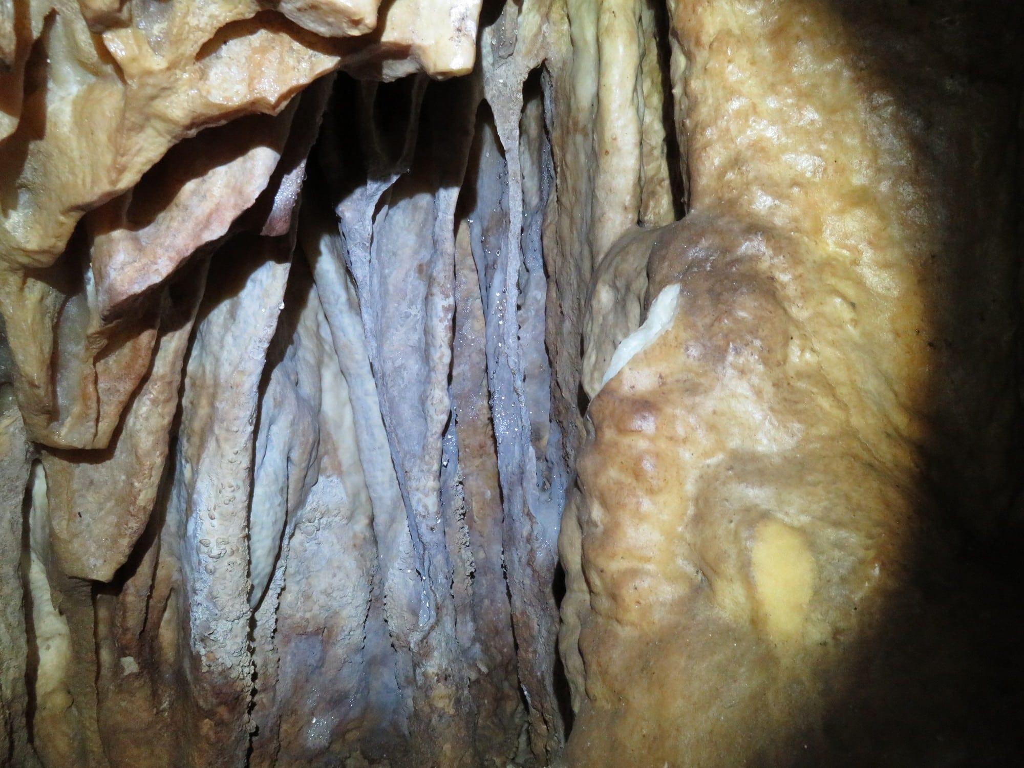 מערת נטיפים עלמה - טיול מערות - ערוצים בטבע