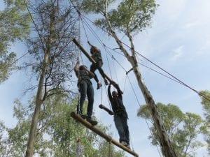 סולם ענקים - סדנת מנהלים - ערוצים בטבע