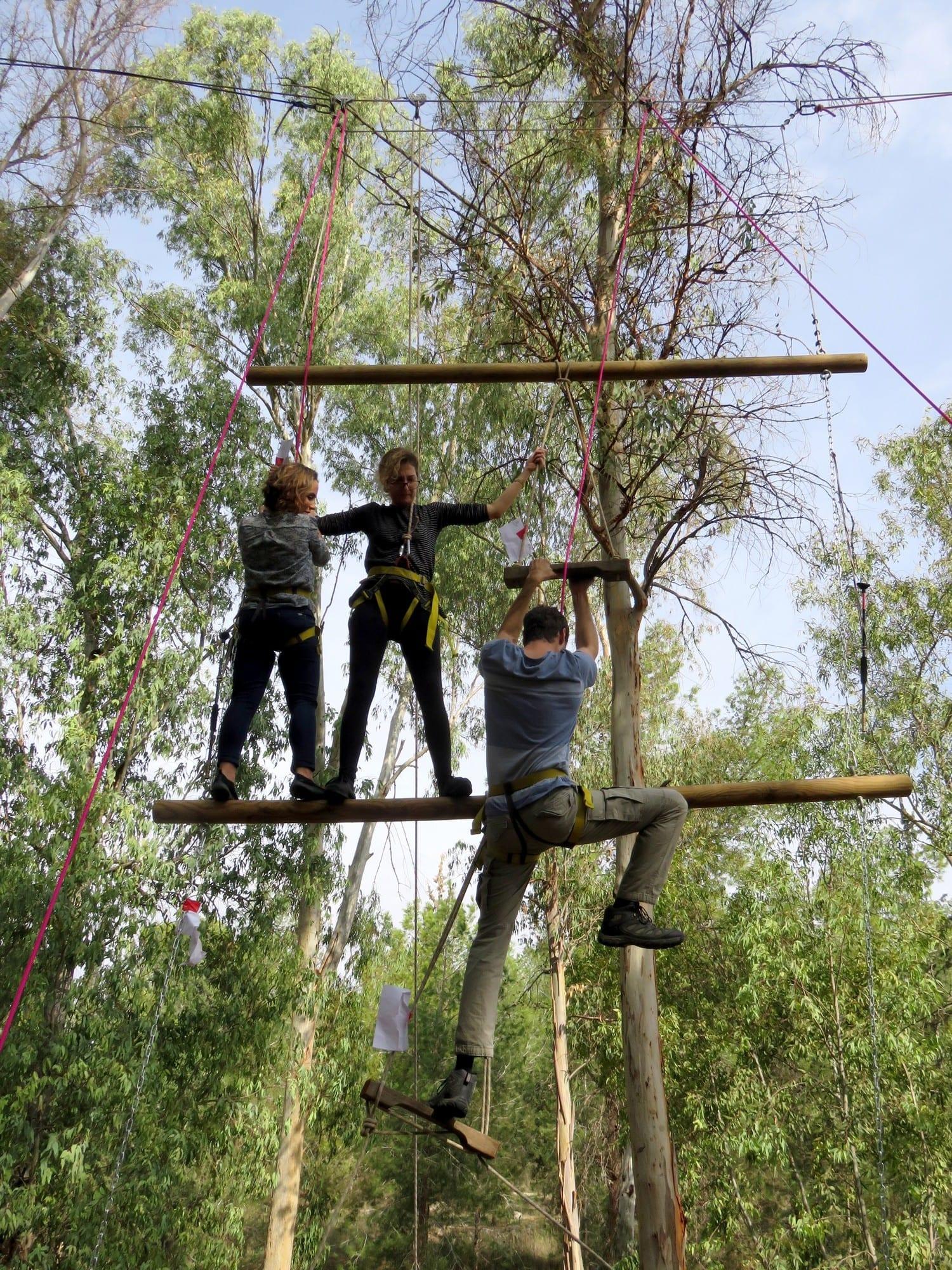 סדנת מנהלים - טיפוס סולם - ערוצים בטבע