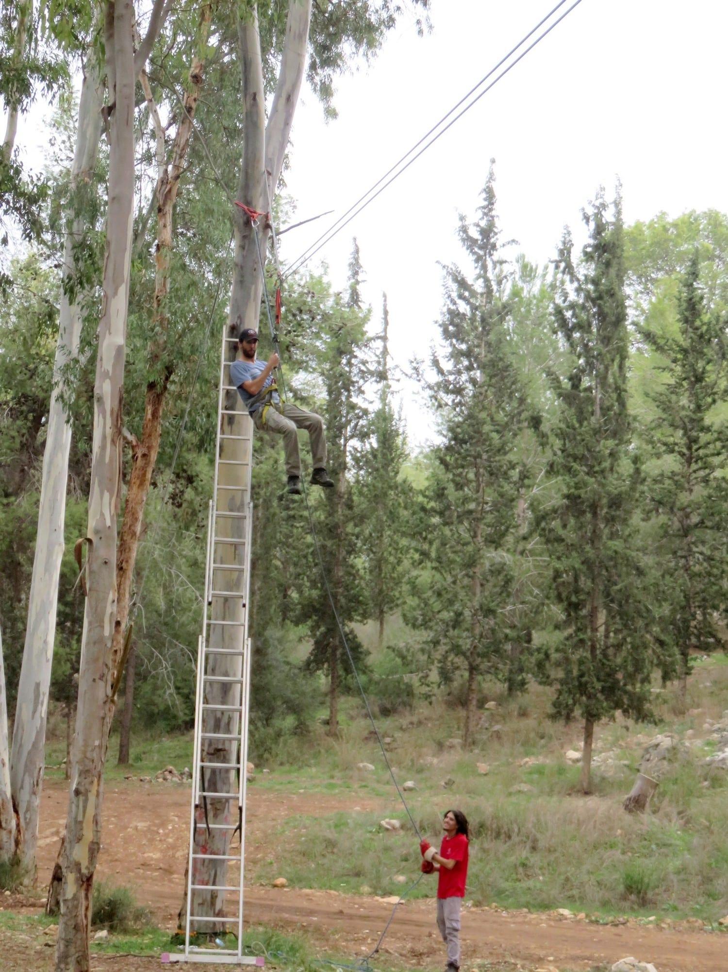 סדנאות מנהלים - משימת אומגה - ערוצים בטבע