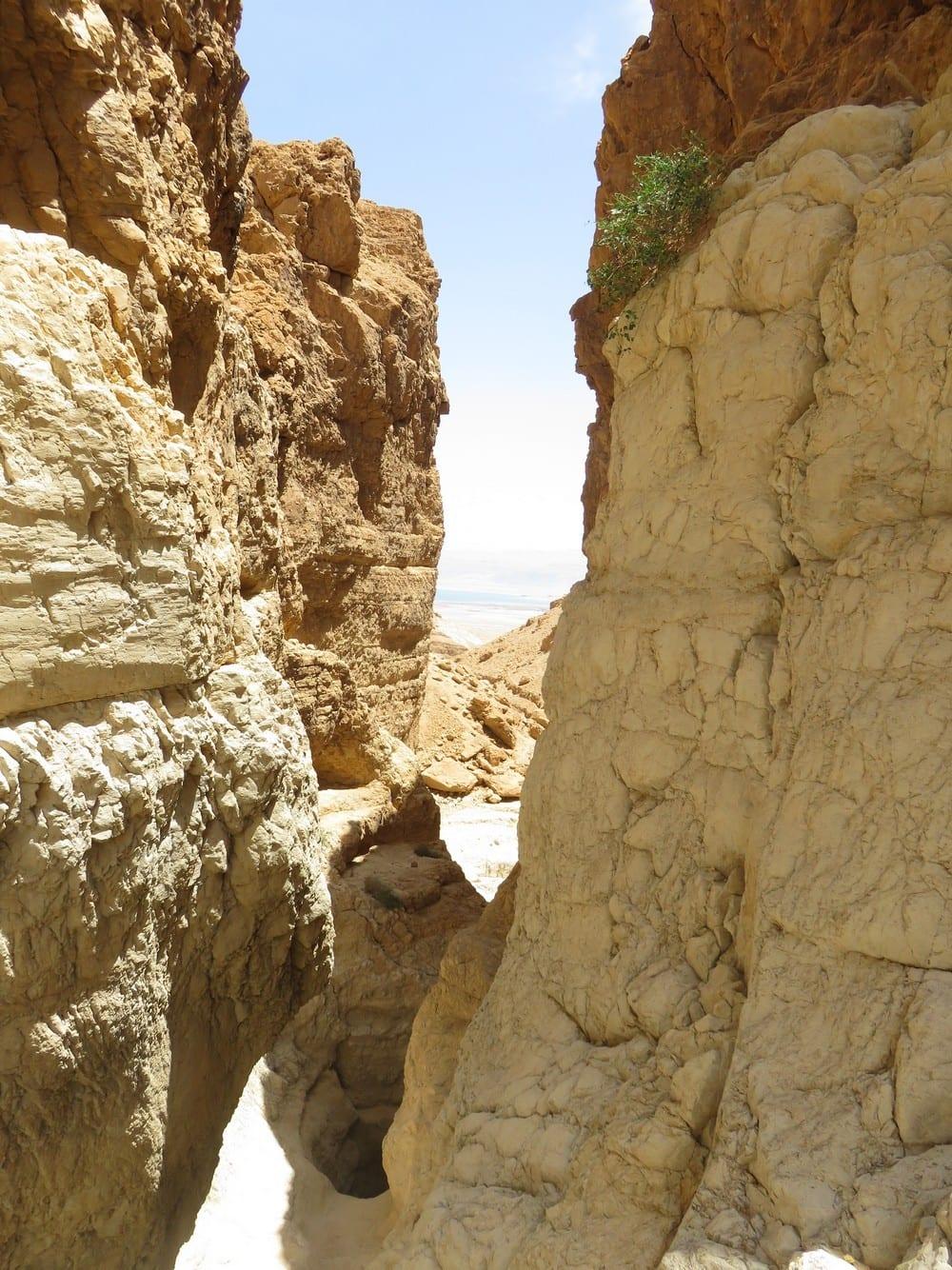 קניון נחל רחף המרהיב - סנפלינג עם ערוצים בטבע